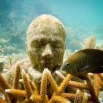 Oito atrações imperdíveis em Cancún