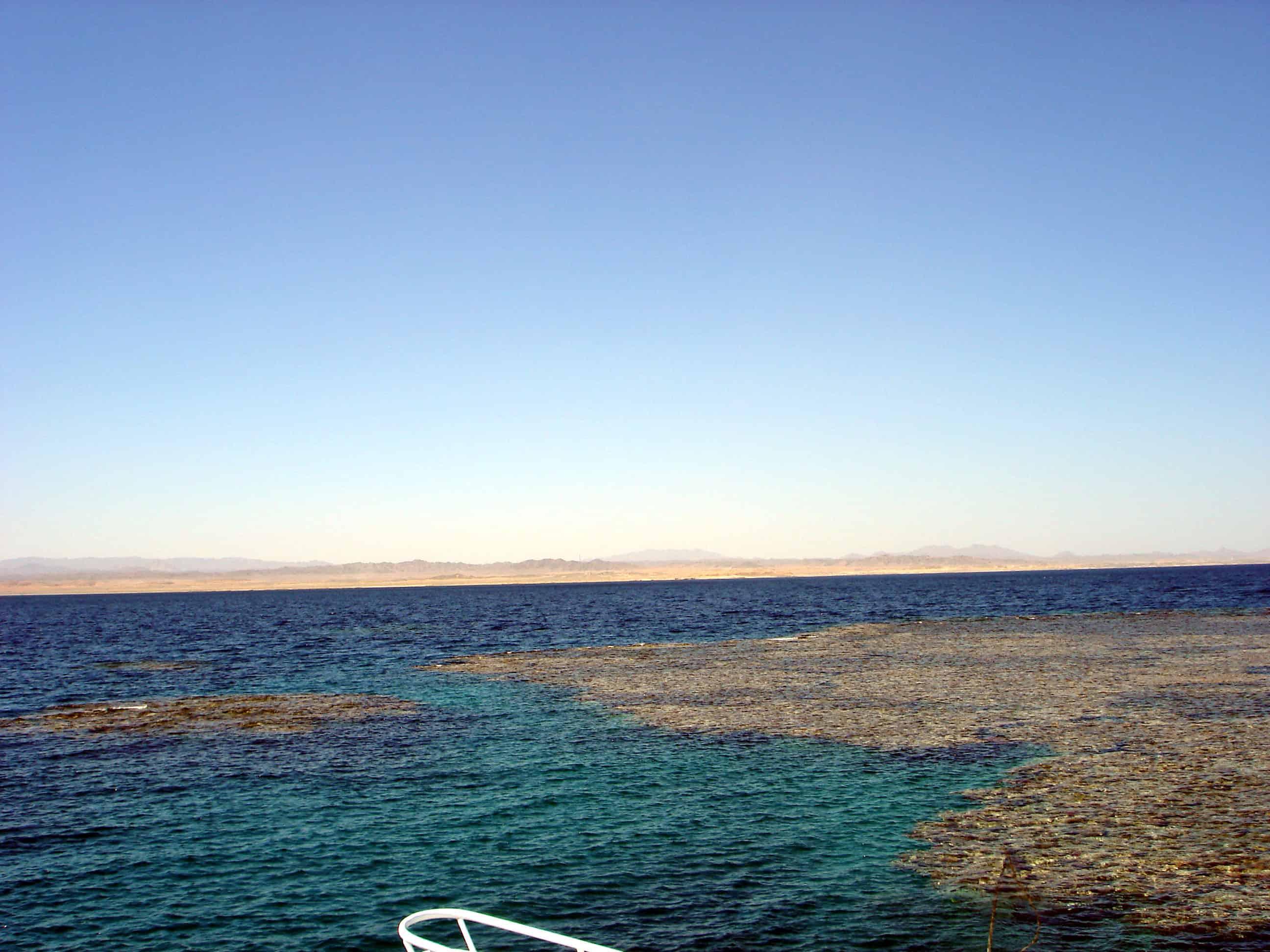 Elphinstone_Reef