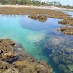 8 piscinas naturais para curtir no Brasil