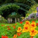 Jardins da Fundação de Claude Monet são ótima opção de passeio próximo a Paris