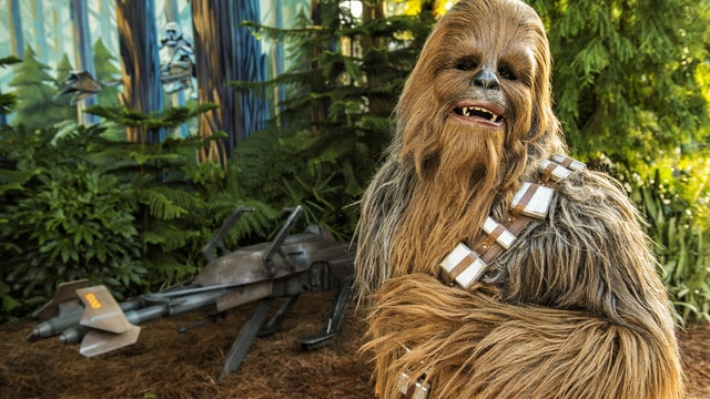 star-wars-weekends-gallery-07
