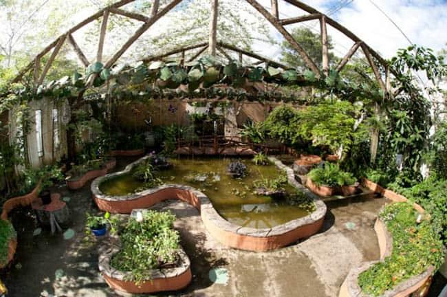 Hacienda Napoles15