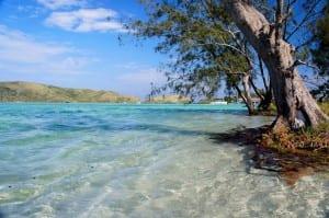 Ilha do Japonês: um paraíso escondido no Rio de Janeiro