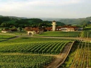 Que tal conhecer as vinícolas do Brasil?