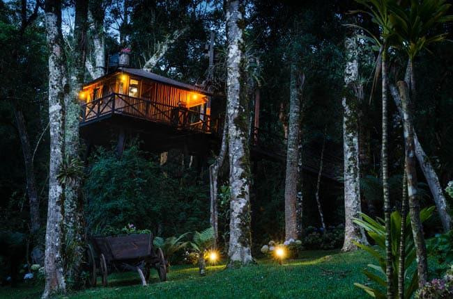 casas na árvore no Brasil 5