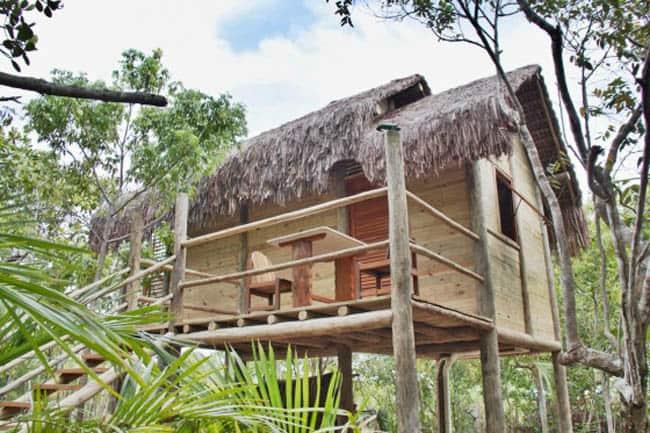 casas na árvore no Brasil 11