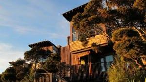 Hotel na Nova Zelândia tem cabanas e casas na árvore em plena mata nativa