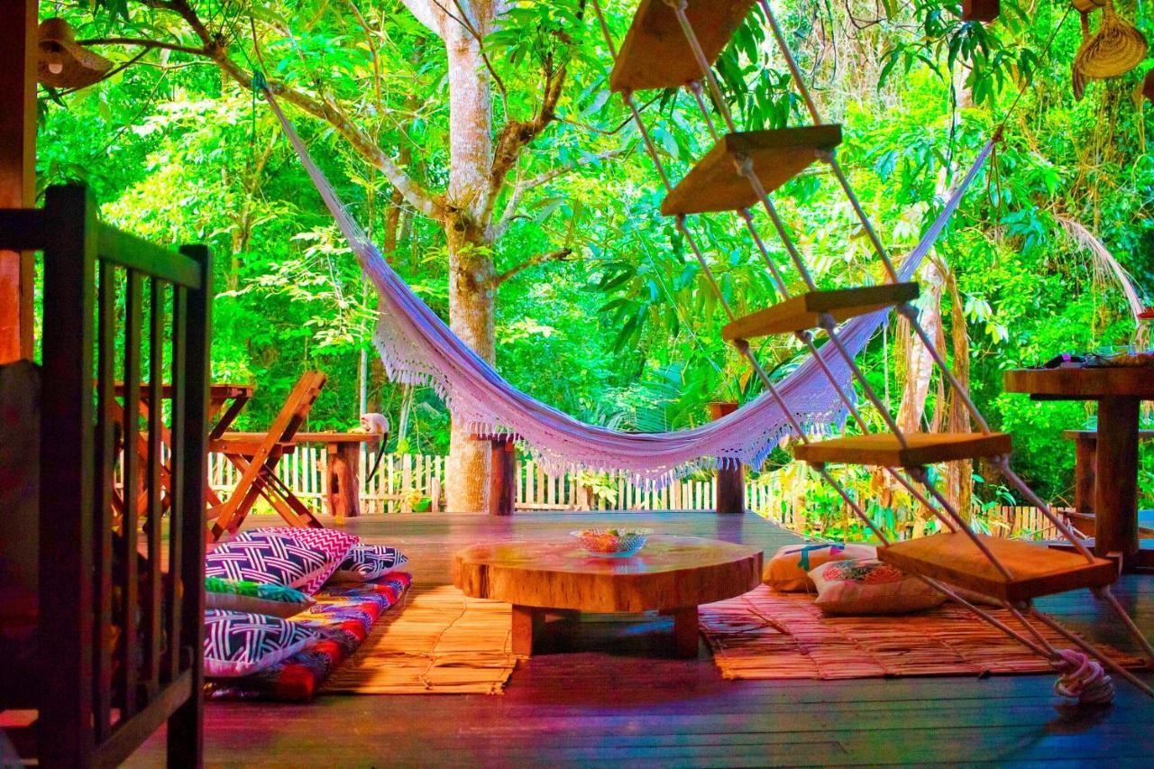 Casas na árvore para se hospedar no Brasil e conhecer