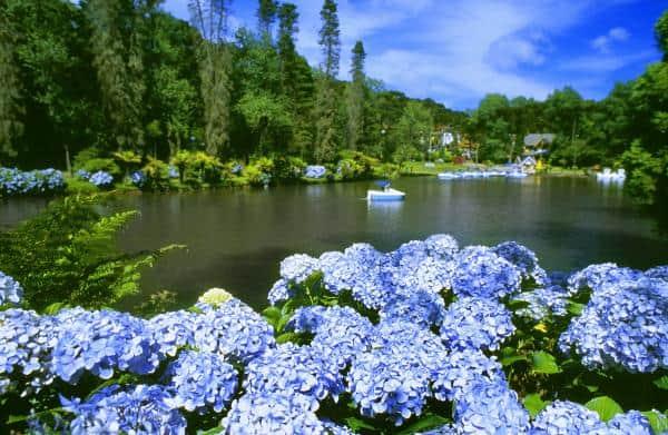 Lago Negro2