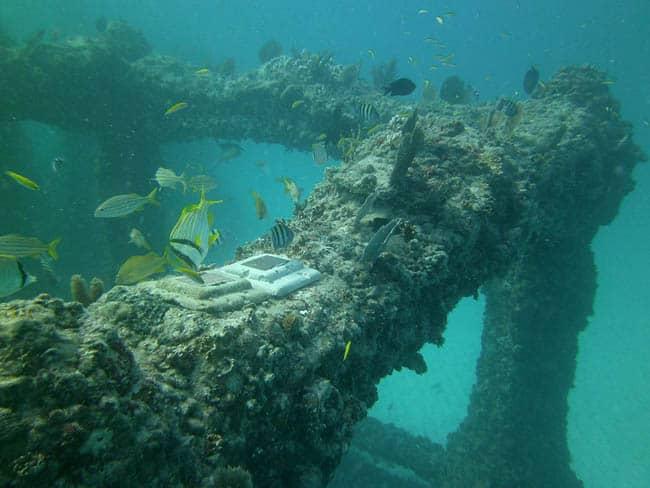 Neptune Memorial2