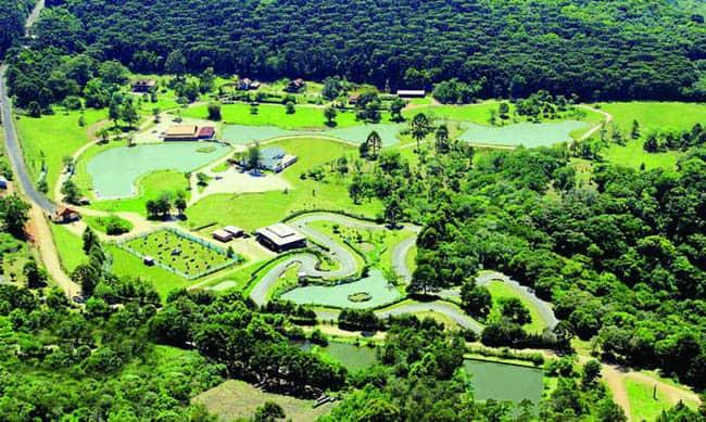 Parque Tomasini