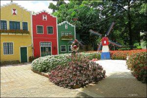 Conheça Holambra, a cidade das flores em São Paulo