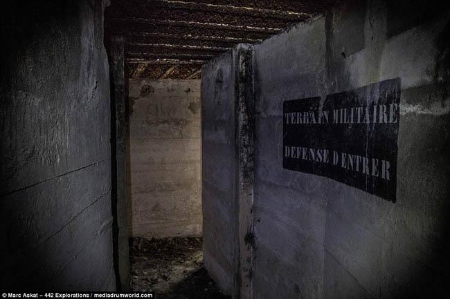 bunkerhitler