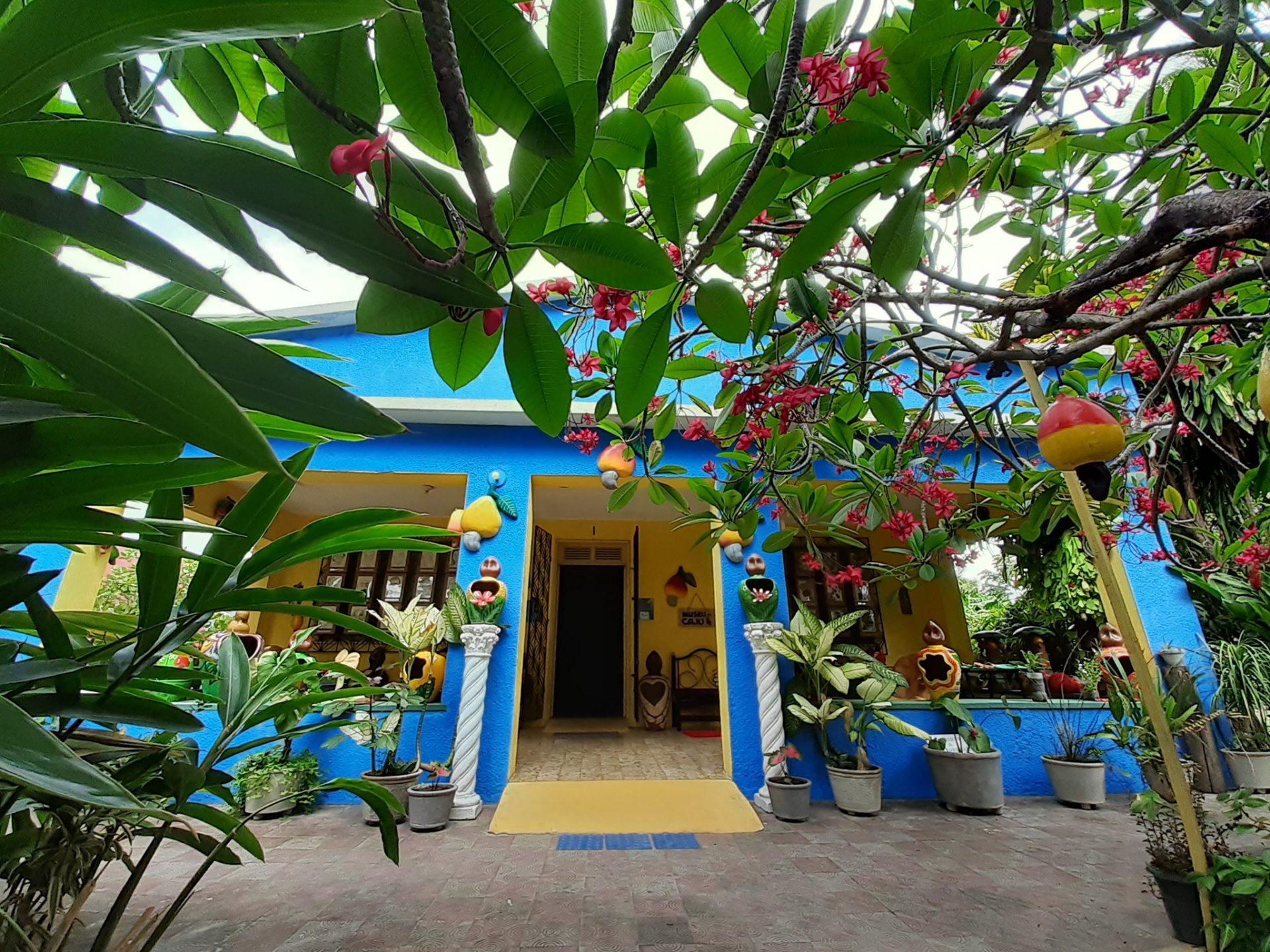 Museu do Caju é atração cultural diferente no Ceará