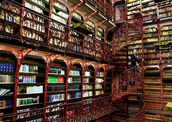 biblioteca-holanda