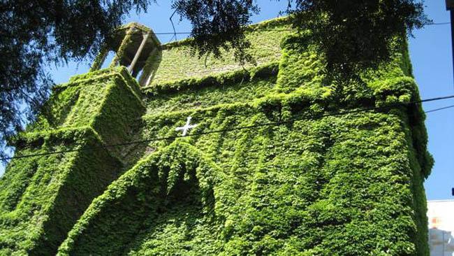 igreja verde-bsas