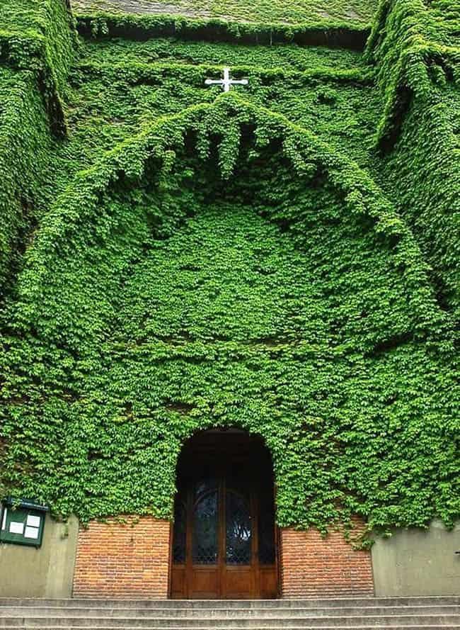 igreja verde-bsas2