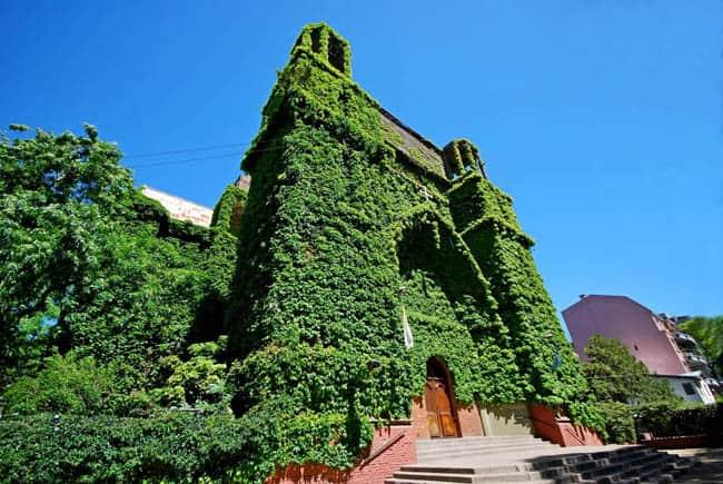 Sabia que existe uma igreja coberta de trepadeiras em Buenos Aires?