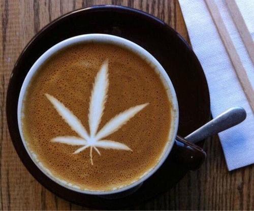 Bud and Breakfast: o 'Airbnb' para quem fuma maconha