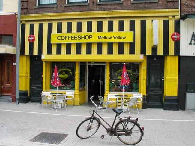 maconha-amsterdam