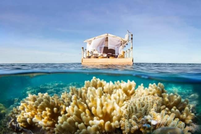 corais1