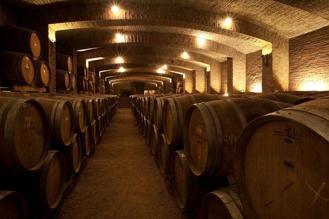 Passeios em vinícolas de Santiago para curtir ao máximo a cidade