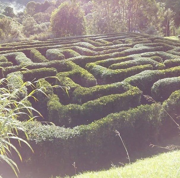 labirinto-amantikir