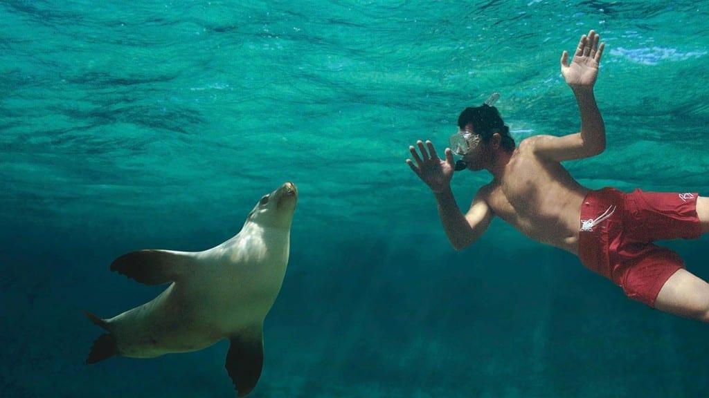 Vídeos 360° permitem viagens sem sair de casa