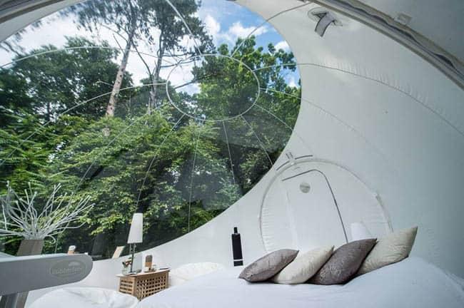 quarto bolha