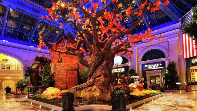 jardim botanico Bellagio-Las Vegas2
