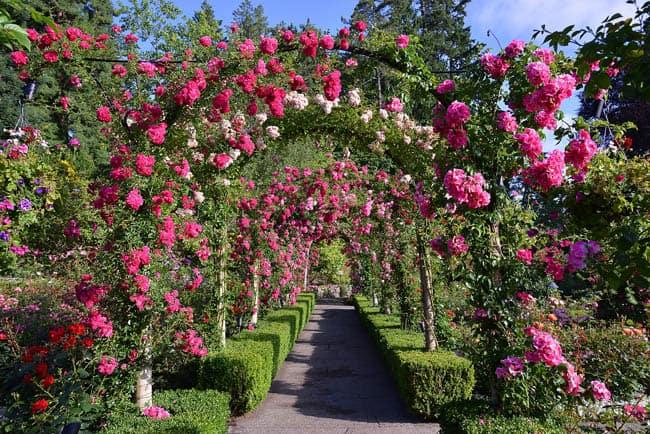 jardins-de-butchart