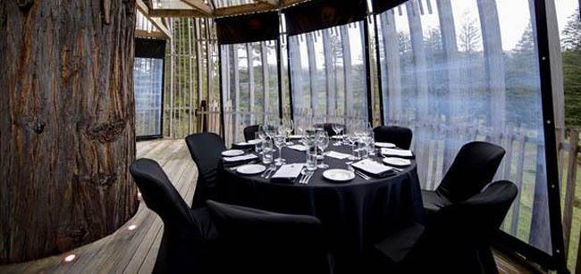 restaurante-na-arvore-auckland