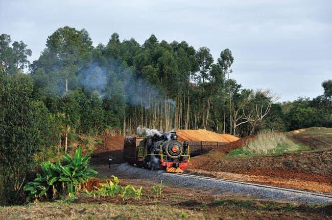 Passeios de trem Maria-Fumaça acontecem em Santa Catarina até outubro