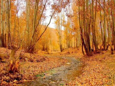 O que tem de bom no Afeganistão? Surpreenda-se com a cultura e beleza do país
