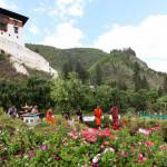 Butão incentiva turistas a plantarem árvores quando visitam o país