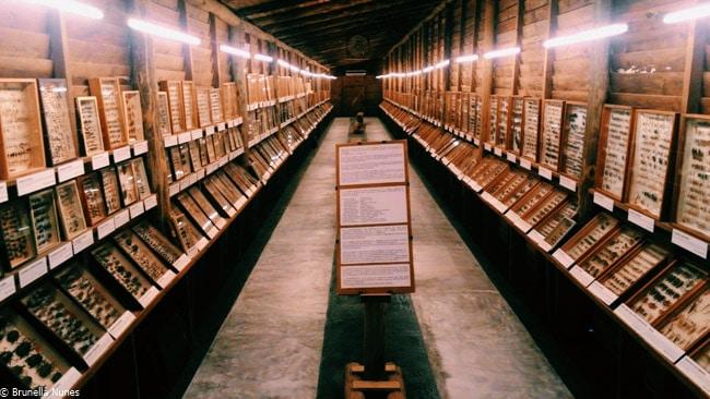 museus-punta-del-este-4