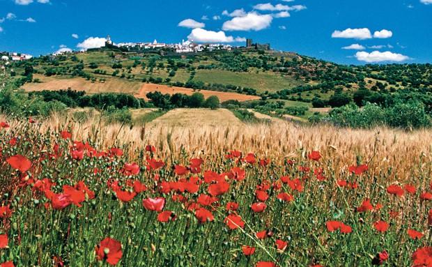 Alentejo reúne história, vinícolas, praias e muito charme a menos de 100 km de Lisboa