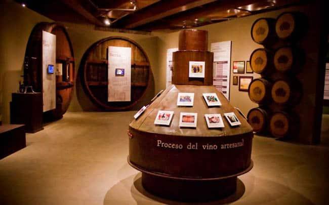 museo-de-la-vid-y-el-vino