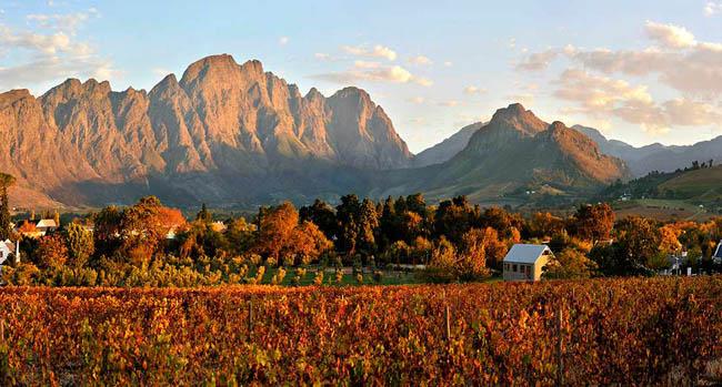 Rota do vinho: destinos para quem ama a bebida dos deuses