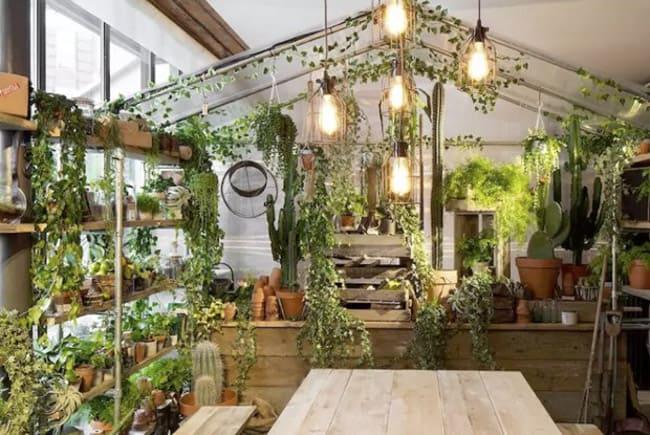 Airbnb e Pantone celebram a cor do ano de 2017 com uma hospedagem exclusiva em Londres