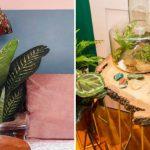 Curitiba ganha misto de café, bar e loja de plantas no bairro Batel