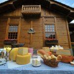 Turismo Rural no Brasil resgata raízes do campo e oferece vivências típicas da roça
