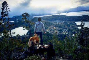 Hora de aventura: Jesse e o cão Shurastey viajaram pela América do Sul a bordo de um Fusca