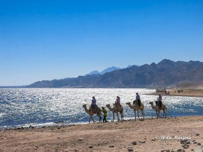 É perigoso viajar ao Egito?
