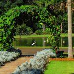 No interior de São Paulo, Jardim Botânico Plantarum tem o maior acervo da América Latina