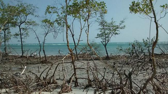 Praia do Mangue Seco, em Jericoacoara, ganha o coração dos turistas e fama no Instagram