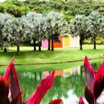 O que conhecer no Instituto Inhotim, o maior museu a céu aberto do Brasil