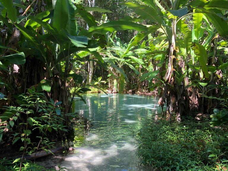 Dicas para planejar uma viagem para o Jalapão