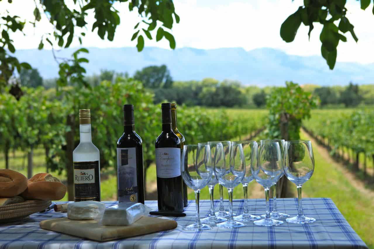 Vinícolas de Tarija são as mais altas domundo e colocam a Bolívia na Rota do Vinho