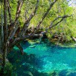 As incríveis lagoas azuis do parque ecológico Ojos Indígenas, em PuntaCana